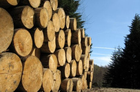 News from Timber Trade Journal (TTJ)